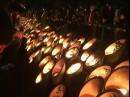 阪神淡路大震災から20年、被災地からのメッセージ